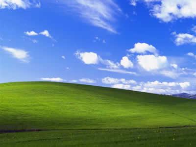 壁紙「草原」のイメージ画像