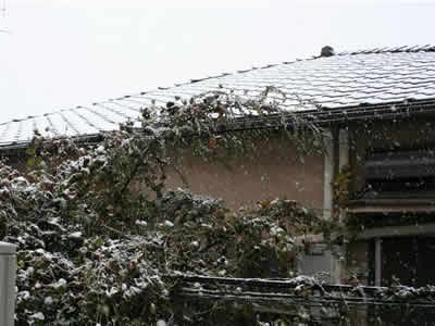 屋根に雪が積もっているイメージ画像