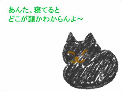 猫の箱ずわり