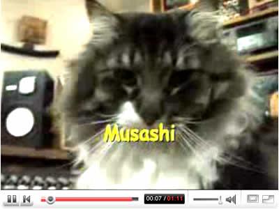 MUSASHI'Sのイメージ画像